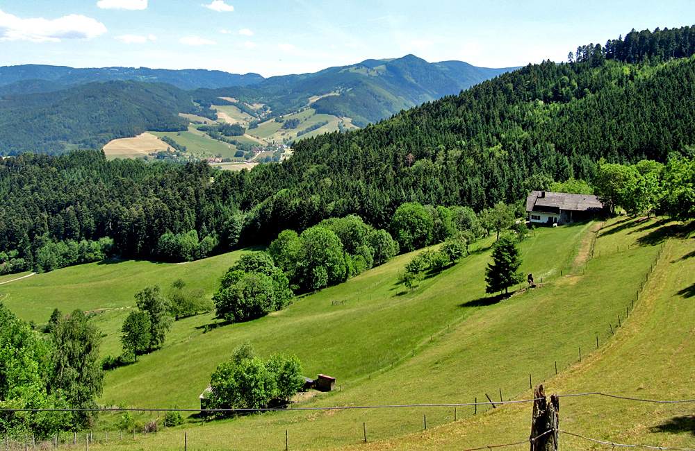 black forest self-guided walking tour germany