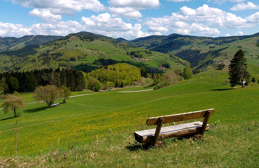 black forest unguided hiking tours germany