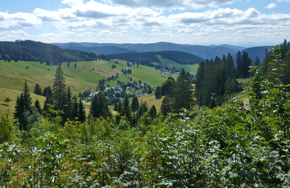 black forest unguided trekking tours germany