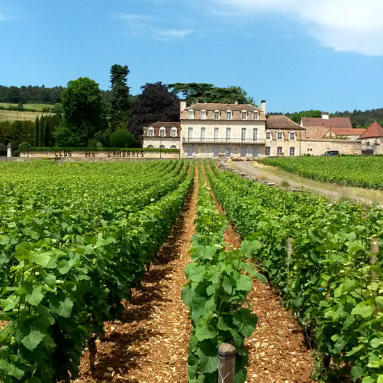unguided walking in burgundy, france