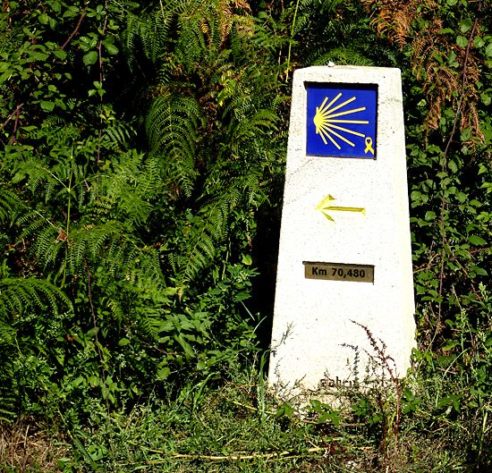 camino santiago self-guided walking and hiking tours