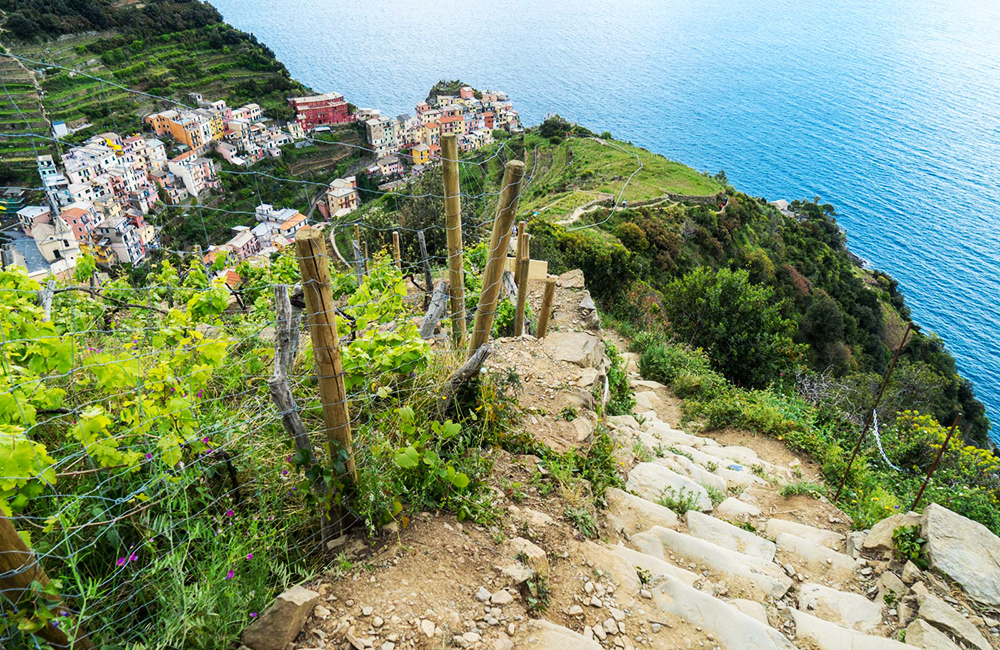 cinque terre self-guided walking and hiking