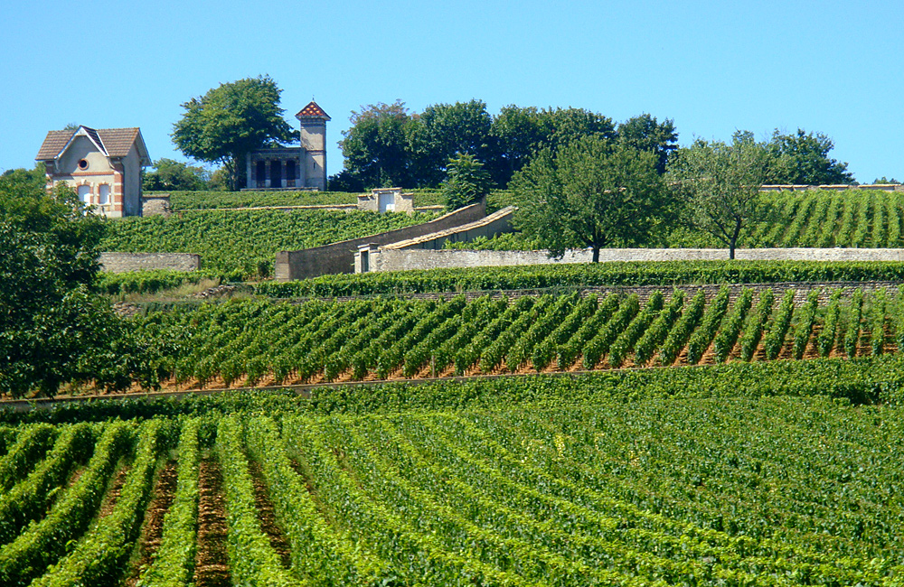 independent walking in burgundy, france