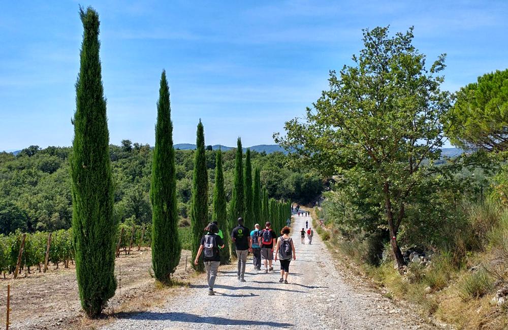 independent walking trekking tuscany italy
