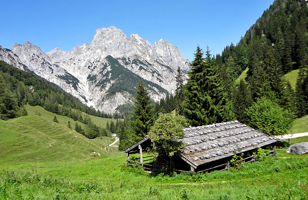 hiking and trekking tours in the alps