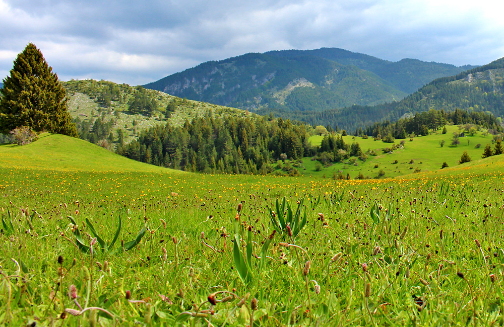walking and trekking holidays of bulgaria