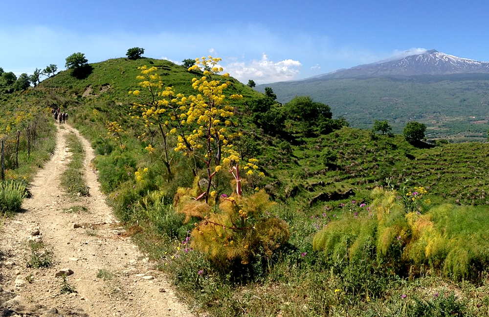 sicily unguided trekking walking tour