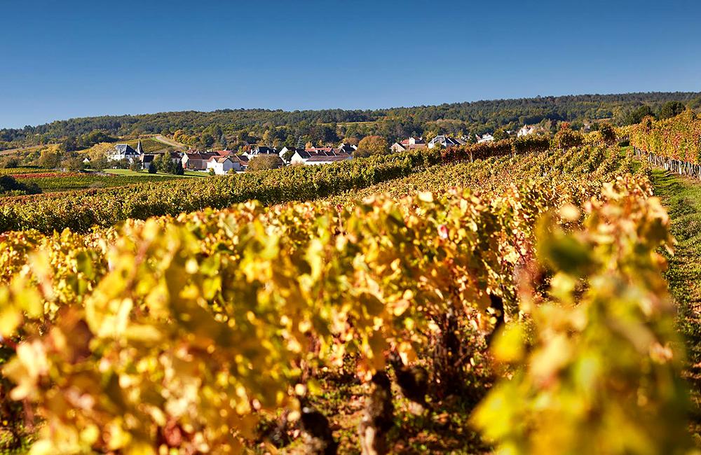 independent hiking in burgundy, france