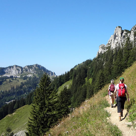 independent trekking tours in the alps