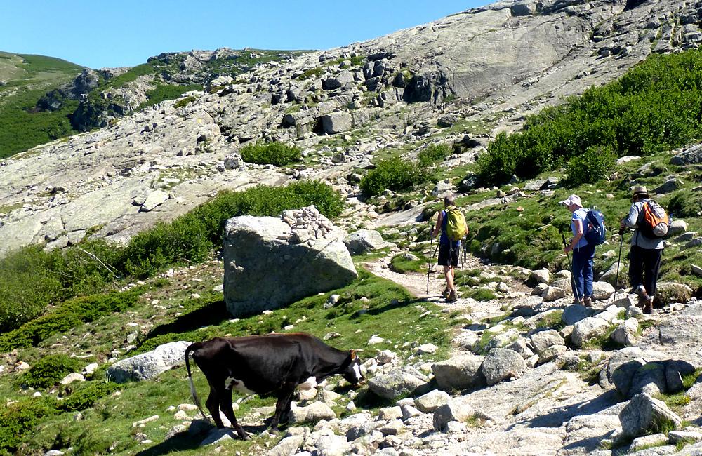 corsica self-guided trekking tours