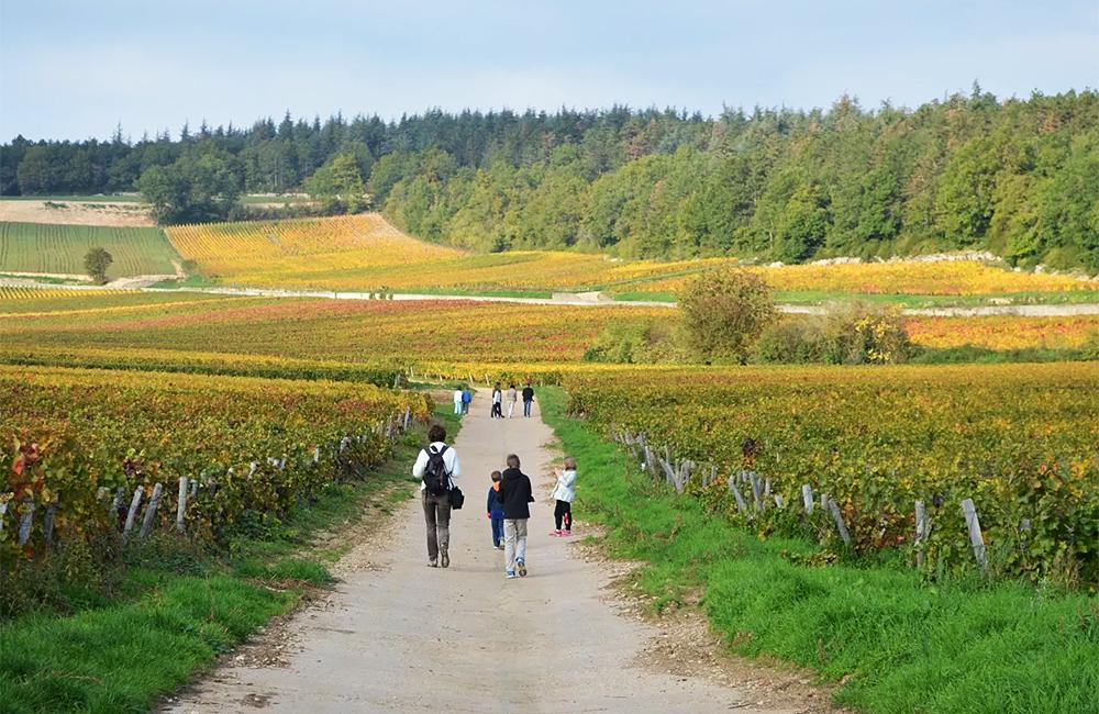 burgundy self-guided walking and hiking, france