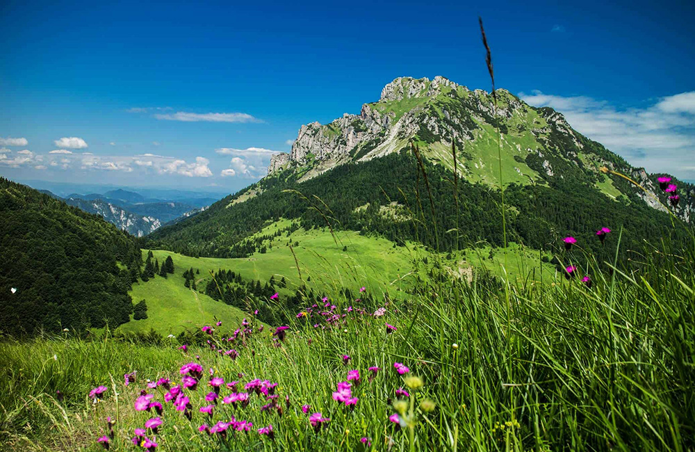 mala fatra hiking tours in slovakia