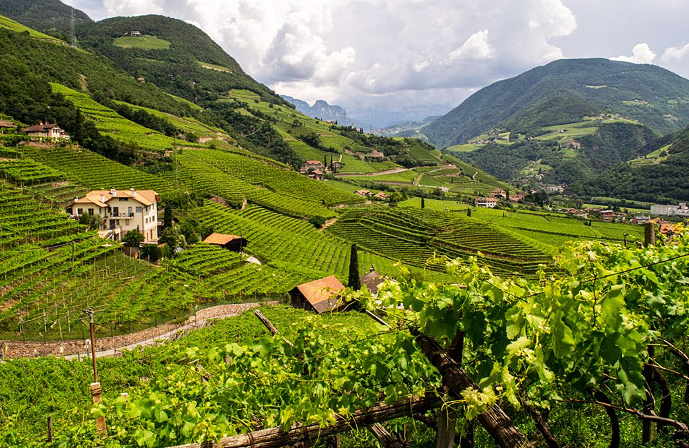 italy self-guided walking and hiking in tyrol