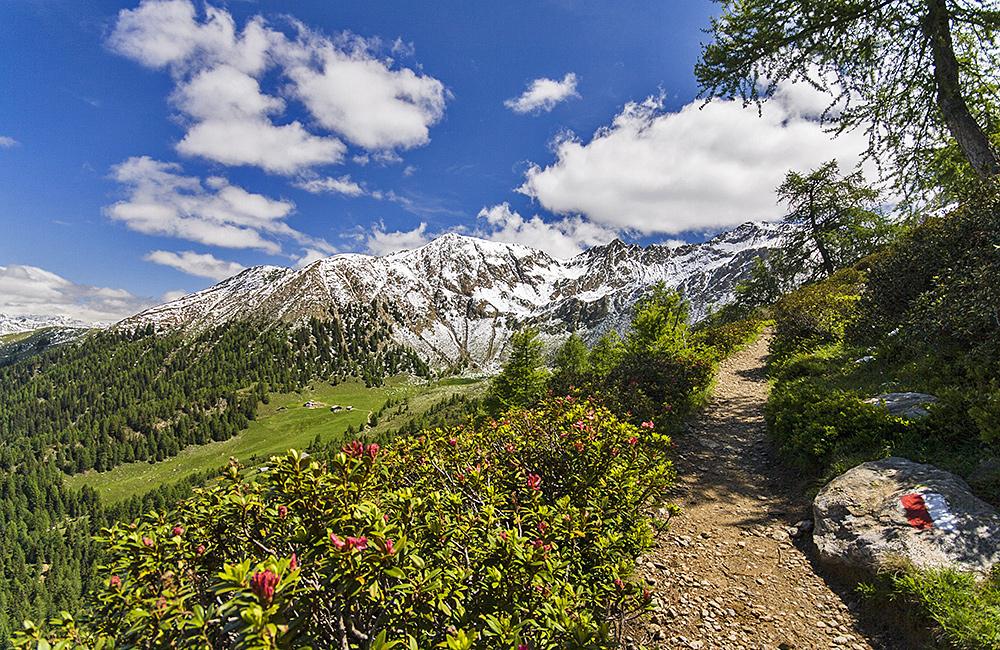 tyrol independent trekking in merano and bolzano