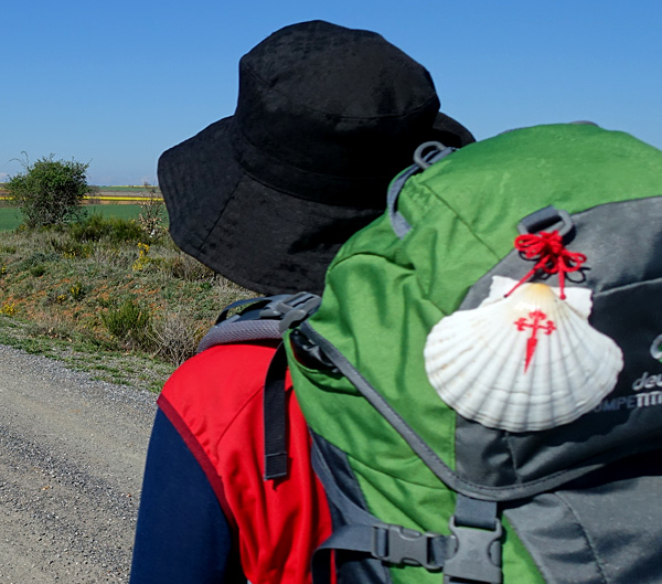 camino santiago self-guided hiking tour