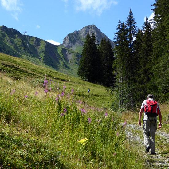 independent trekking via alpina switzerland