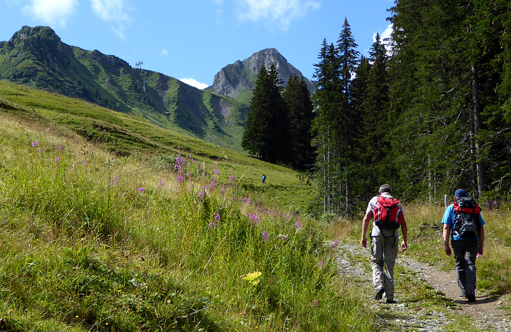 independent trekking via alpina switzerland