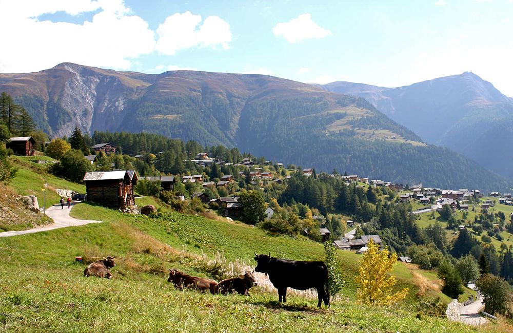 aletsch unguided trekking tour