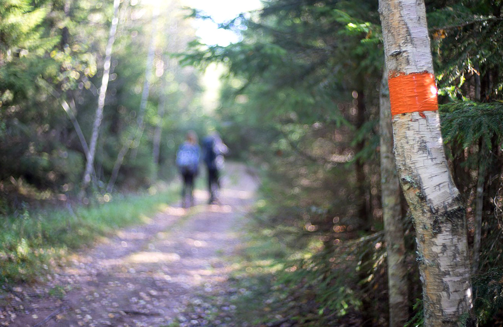 sweden and high coast self-guided walking