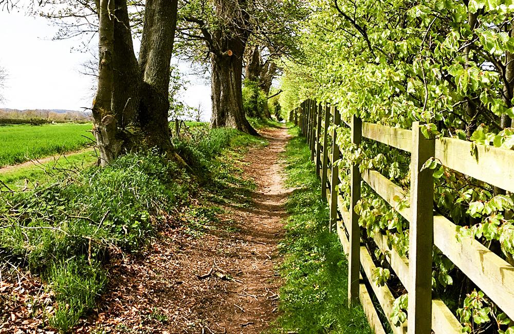 hadrian's wall self-guided hiking tour