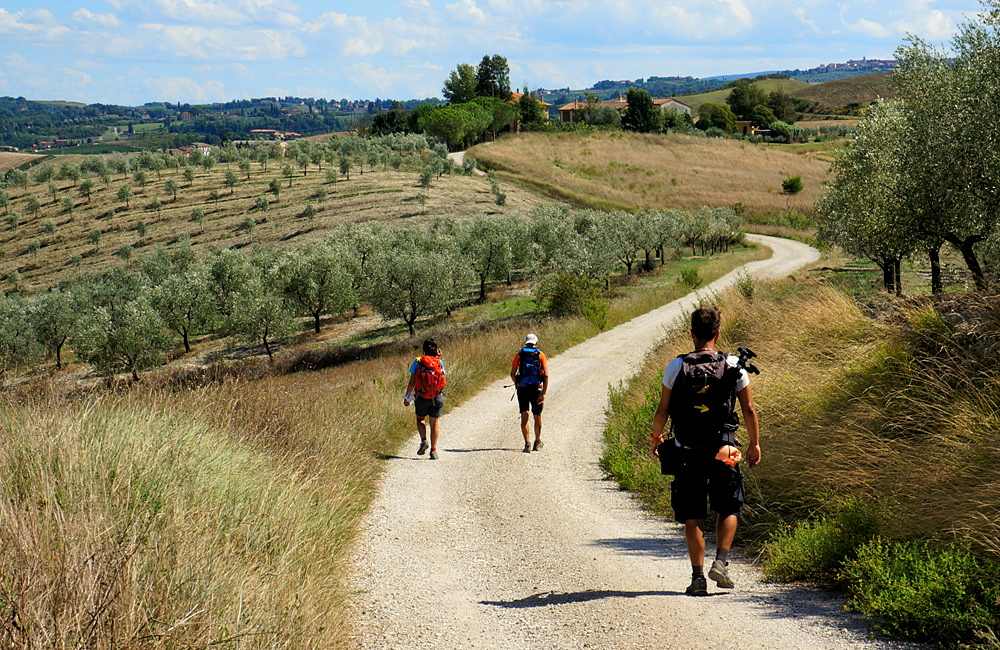 trekking along via francigena in italy