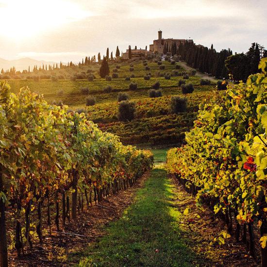 inn to inn hiking in tuscany, italy
