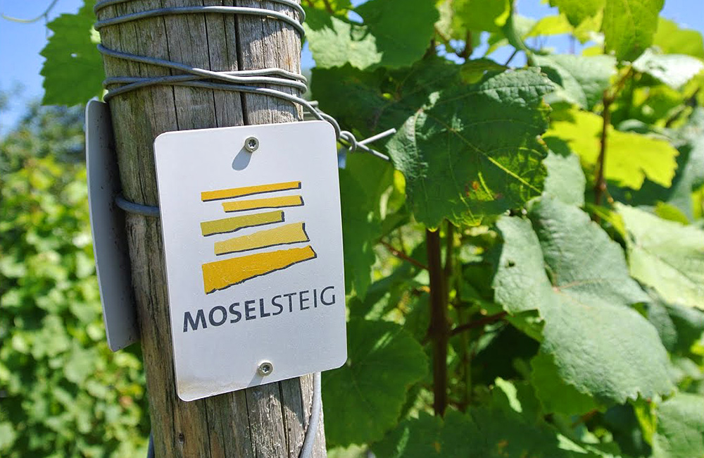 moselle and eifel walking in germany