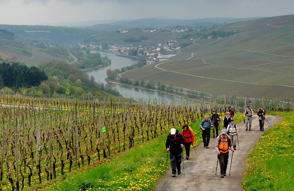moselle and eifel hiking in germany