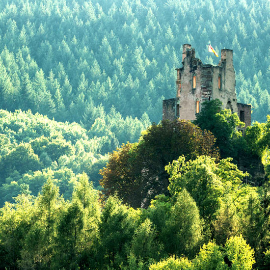 moselle and eifel self-guided walking