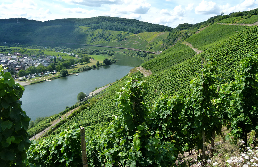 moselle and eifel independent walking