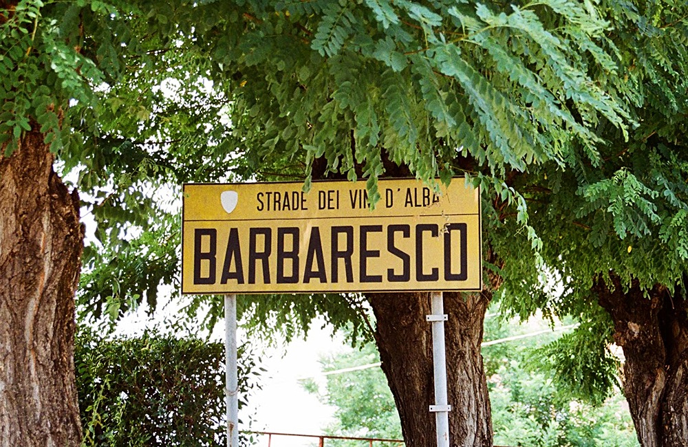 barolo to barbaresco independent trekking in italy