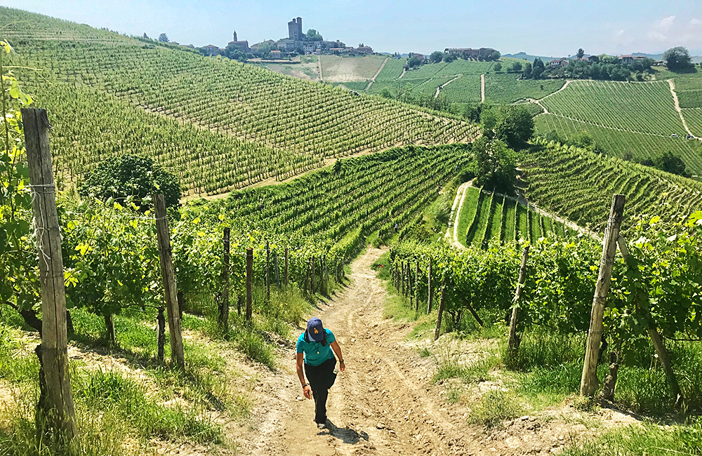 independent trekking in piedmont, italy