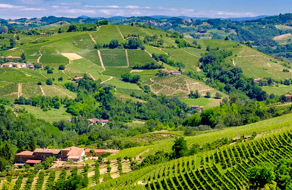 wine routes of piedmont, walking in italy