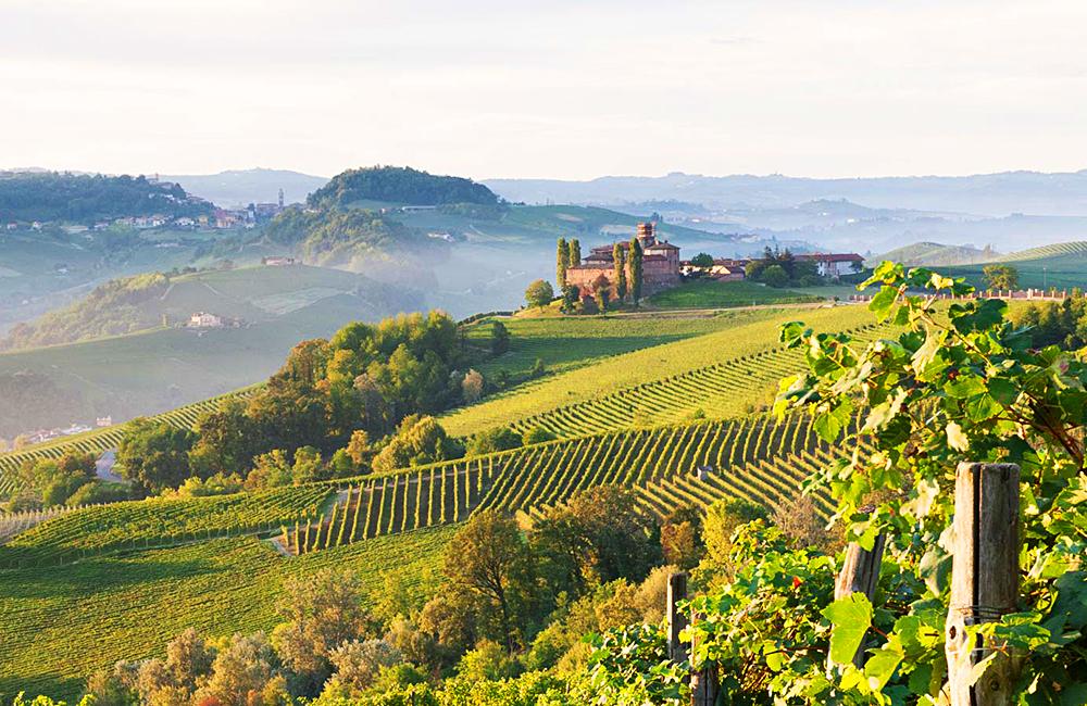 barolo to barbaresco wine trail
