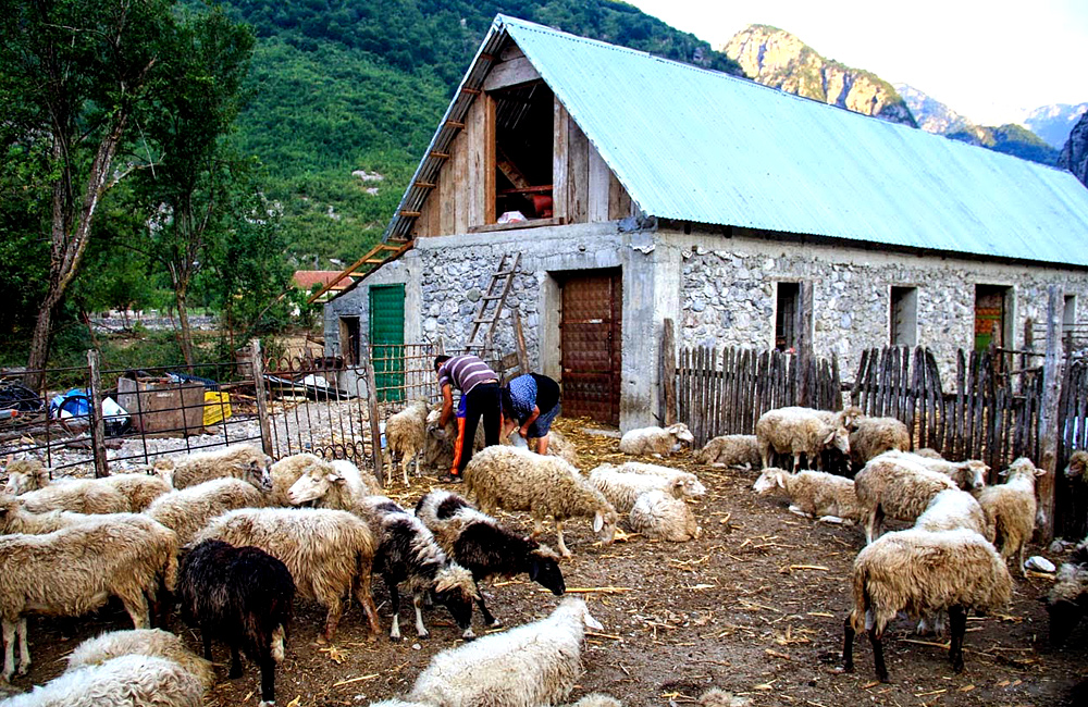 albania self-guided walking and hiking trek