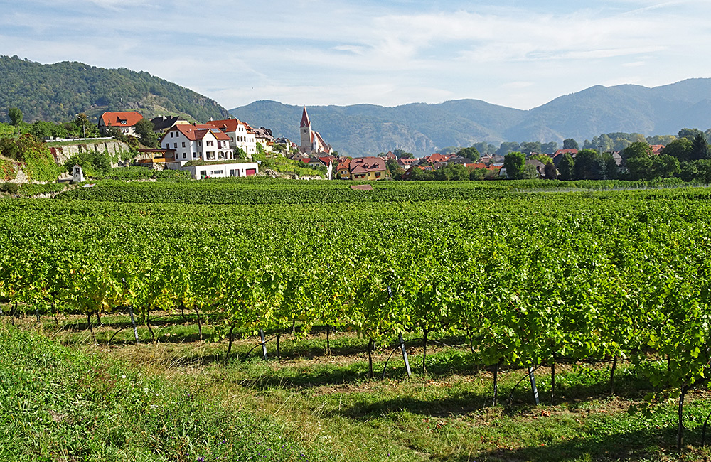 self-guided walking along wachau trail in austria