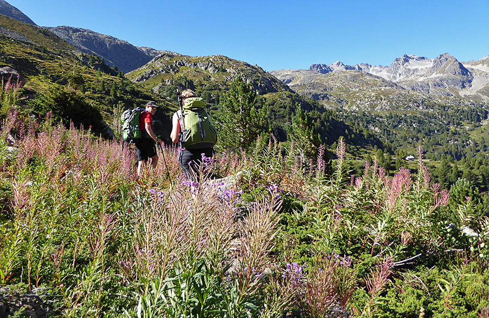 inn to inn hiking in the swiss alps in grisons