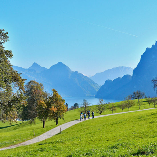 lake lucerne independent walking in switzerland