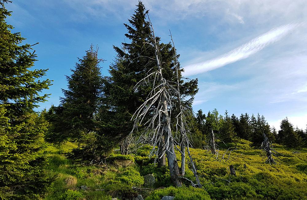 czech republic self-guided walking and trekking