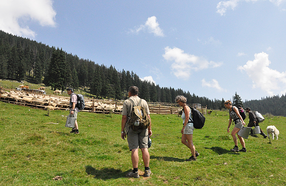 transylvanian independent hiking and rambling tours