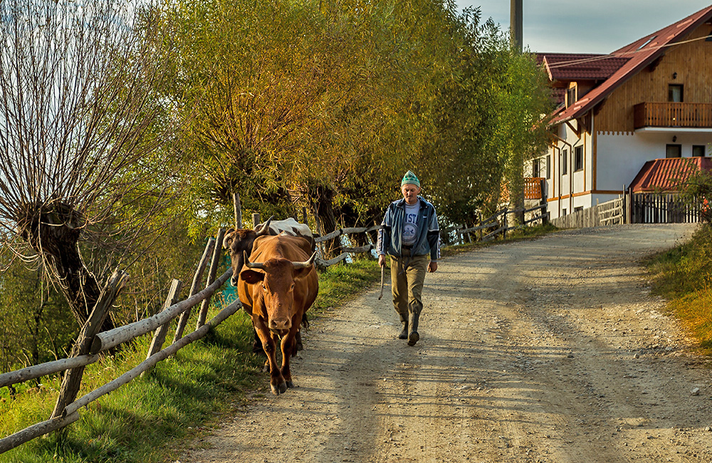 independent walking and hiking holidays in romania