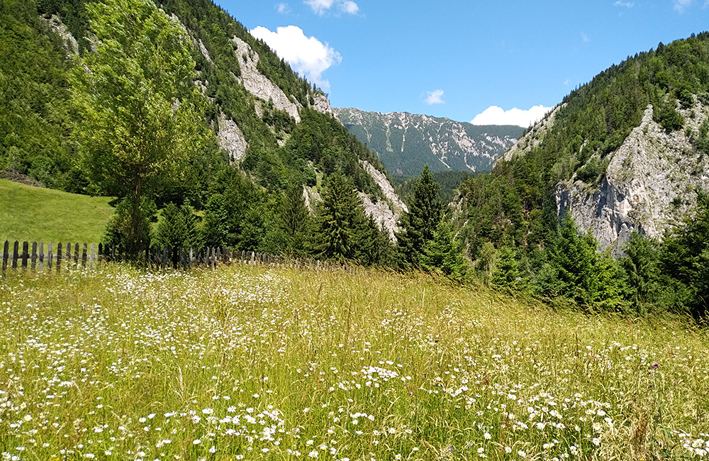 self-guided rambling and walking in romania