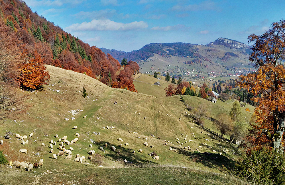 independent rambling and walking tours in romania