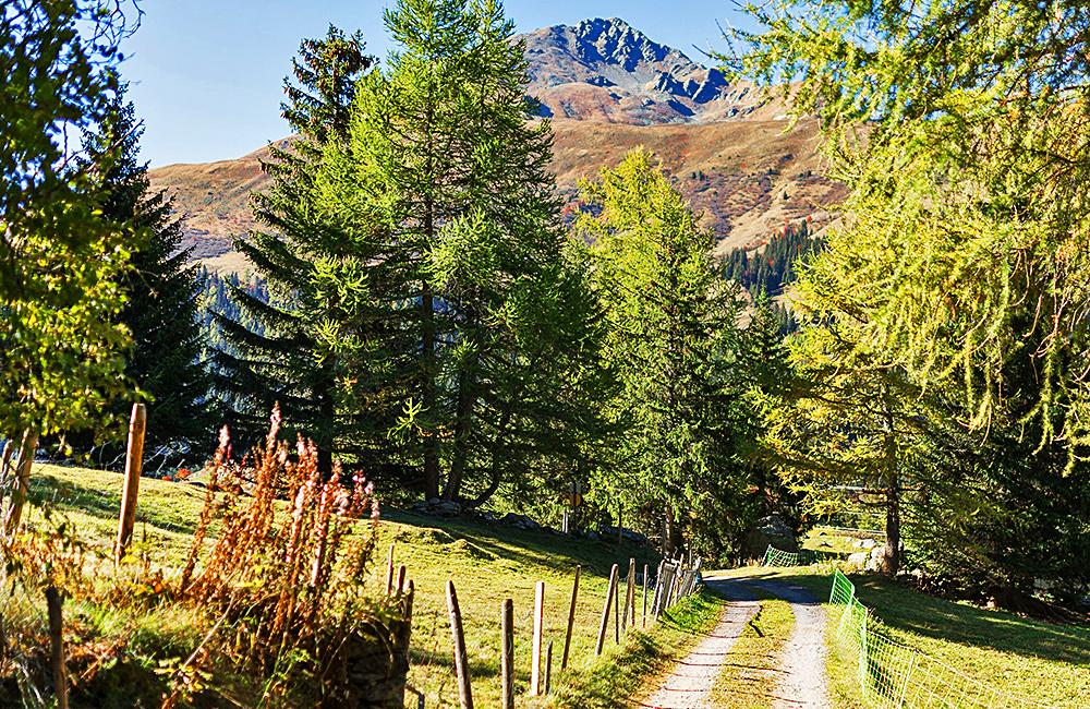 via francigena inn to inn hiking in switzerland