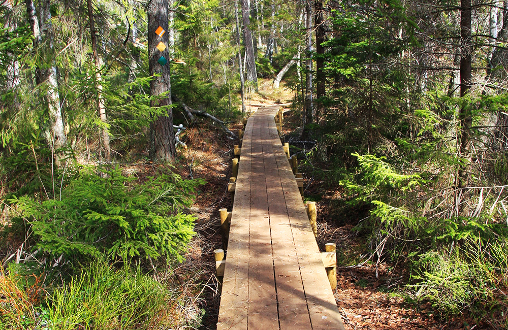 sörmlandsleden walking and trekking holidays in sweden