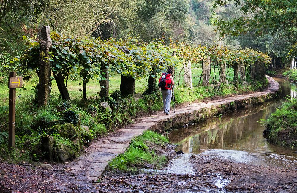 portugal self-guided hiking along camino de santiago