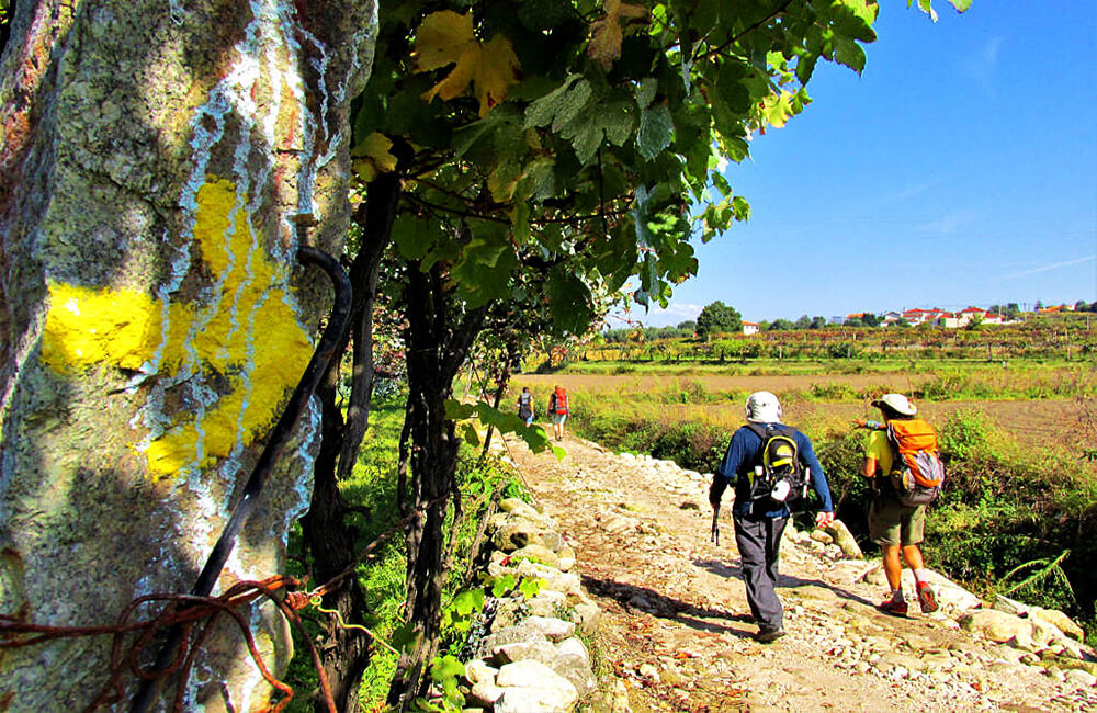 camino de santiago portugal independent trekking