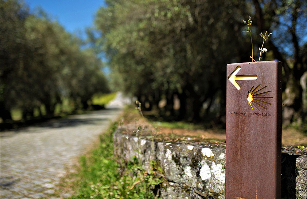 camino-portuguese-coastal-route-hiking