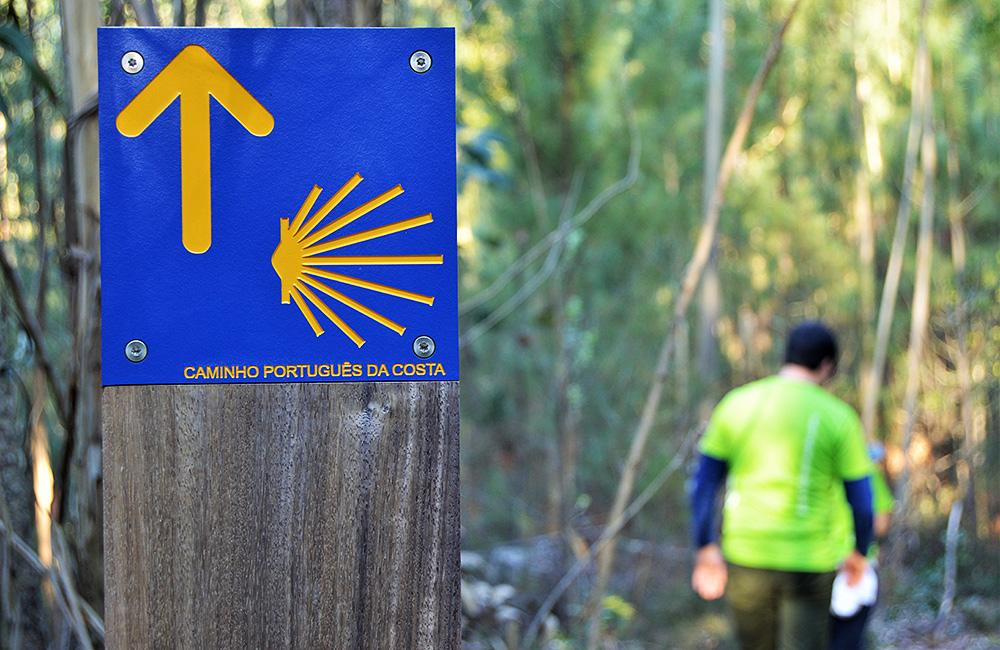 coastal-way-st.-james-portugal