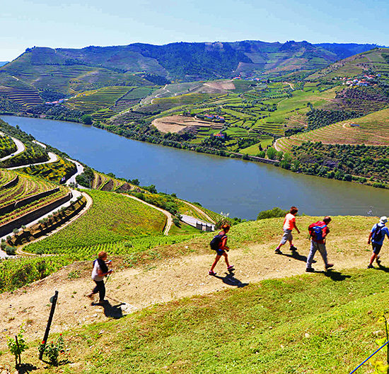 douro-self-guided-walking-portugal